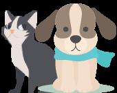 animo-adopter un chiens